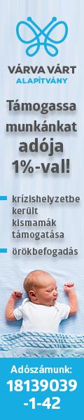 VVA 1%_120x600