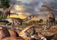 Bemutatták az első Magyarországon talált dinoszaurusztojást