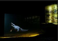 Újból bővült az Ipolytarnóci Ősmaradványok élménykínálata