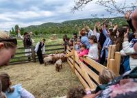 #Magyarországmegvár – Húsvéti zár a kirándulóhelyeken