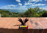 Gombóc Artúr miniszobra jelent meg Tihanyban