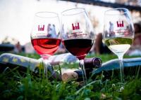 A bor és a jazz ünnepe Debrecenben, 2021. augusztus 5 - 8.