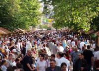 Idén elmarad a Szegedi Borfesztivál