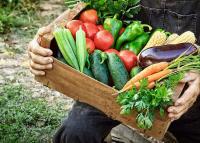 Mit jelent valójában, ha a zöldségen bio felirat van?