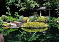 Megnyílt Zugló titkos ázsiai oázisa, a pompás Japánkert