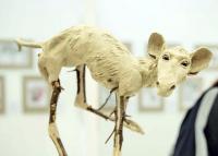 Különös lényeket szül az emberi képzelet: látványos kiállítás nyílt a Kölcsey Központban